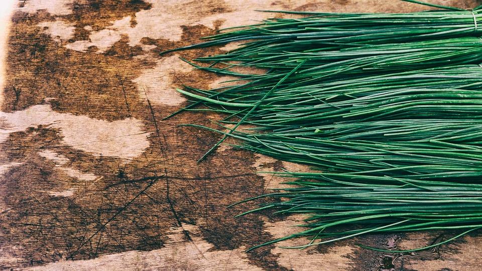 Štyri bylinky, ktoré by sme mali doma pestovať