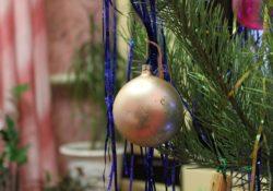 Výhody a nevýhody živého vianočného stromčeka