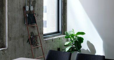 Prečistite vzduch v domácnosti bez čističky vzduchu
